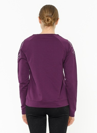 Fresh Company Sweatshirt Bordo